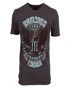 Camiseta Amplified Ramones Forever Men
